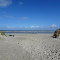 Strand plus duinen