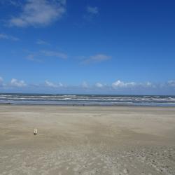 Strand zon
